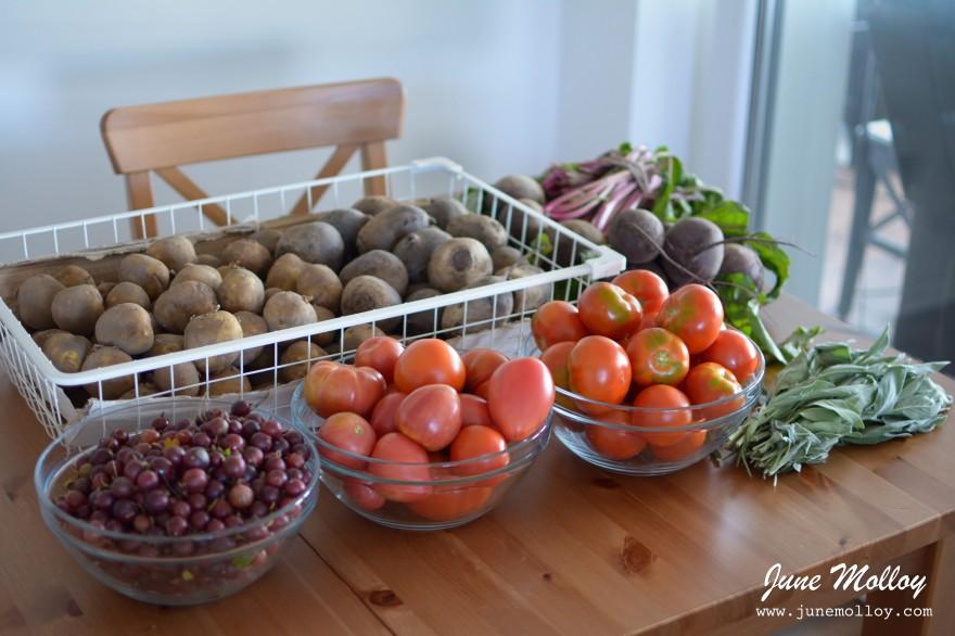 Tauragė Vegetable Market | www.junemolloy.com