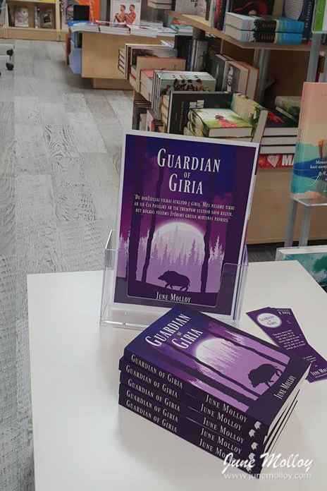 Vaga Bookshop, Taurage | www.junemolloy.com
