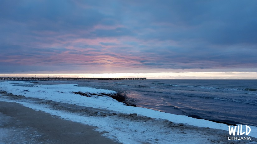 Palanga, Baltic Sea, Lithuania   www.junemolloy.com